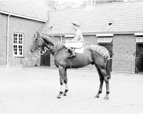 Racehorse Twilight Alley with Jockey Lester Piggott
